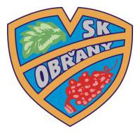 U11: Venkovní turnaj SK Obřany @ SK Obřany